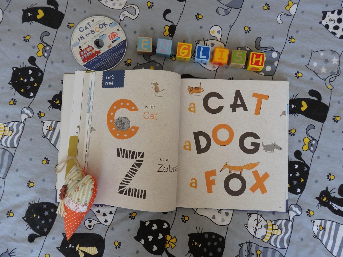 """""""Cat in the book"""""""