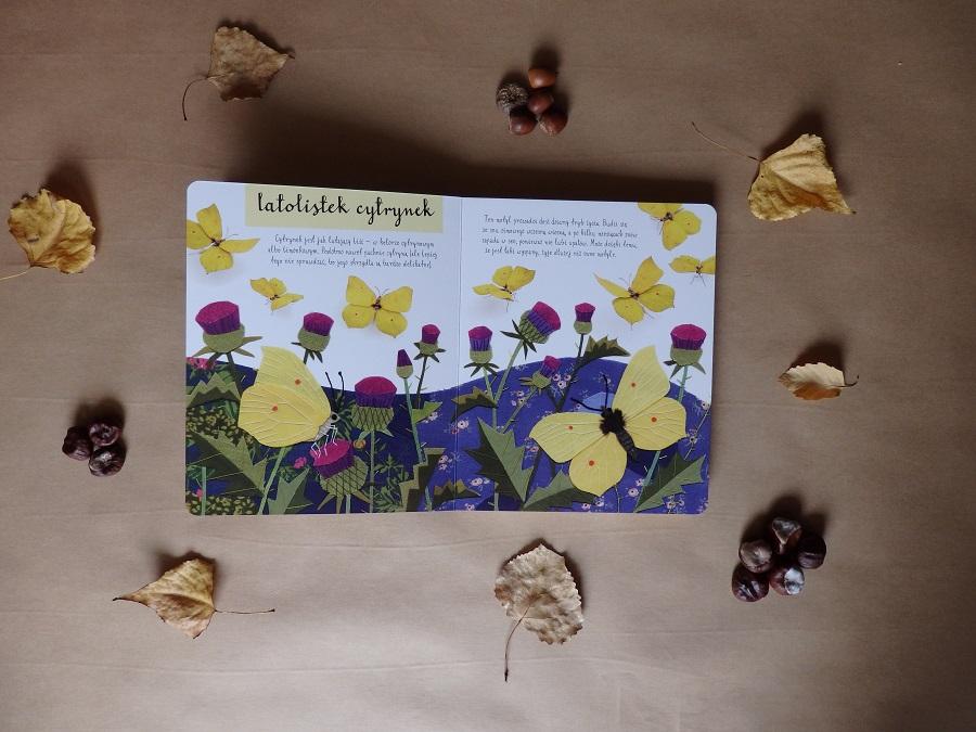 Mały atlas Ptaków Ewy i Pawła Pawlaków, Nasza Księgarnia