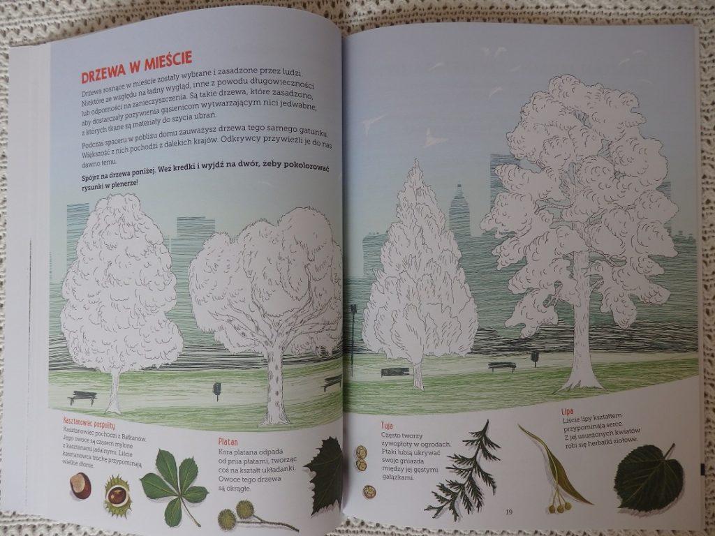 Mój zeszyt obserwacji przyrodniczych: Drzewa, Francois Lasserre, Isabelle Simler, Egmont