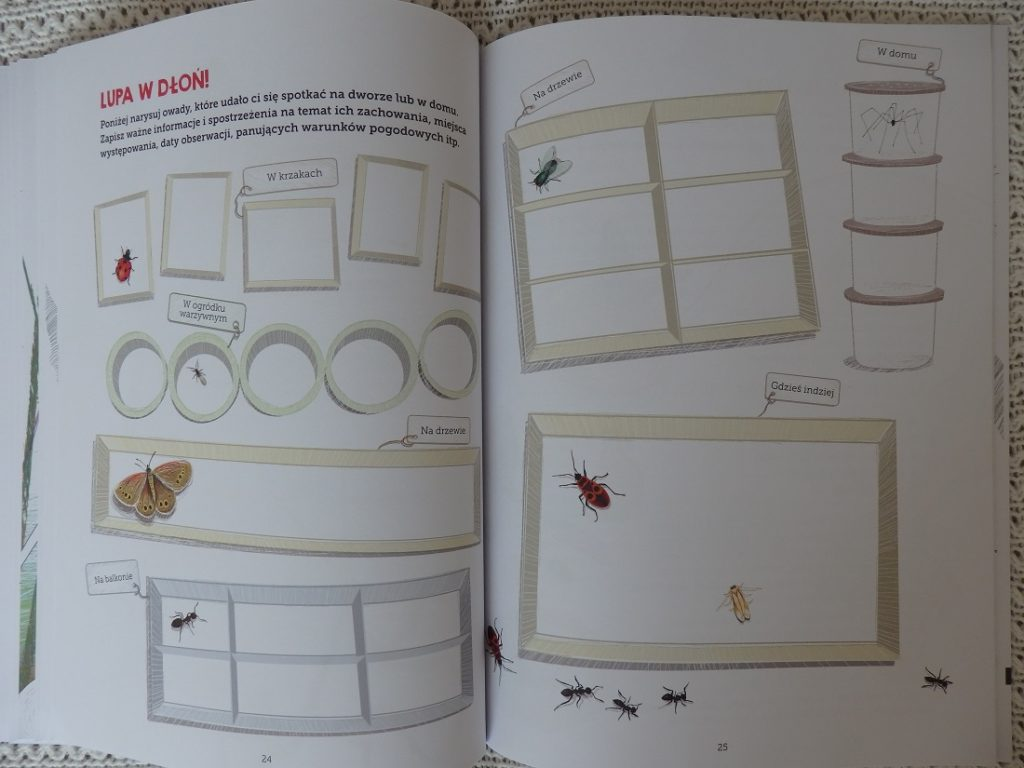 Mój zeszyt obserwacji przyrodniczych: Owady, Francois Lasserre, Isabelle Simler, Egmont
