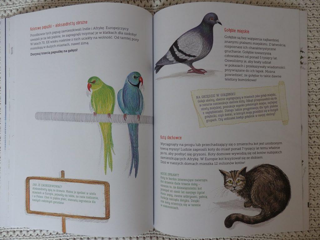 Mój zeszyt obserwacji przyrodniczych: Przyroda w mieście, Francois Lasserre, Isabelle Simler, Egmont