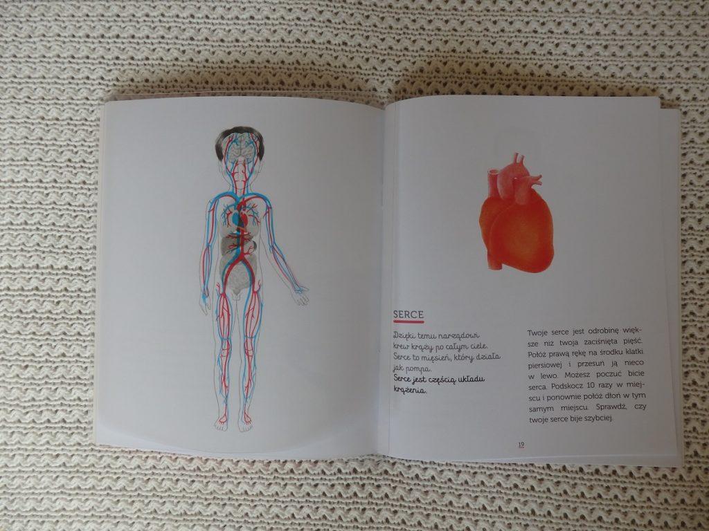 Biblioteczka Montessori. Ciało człowieka, Egmont