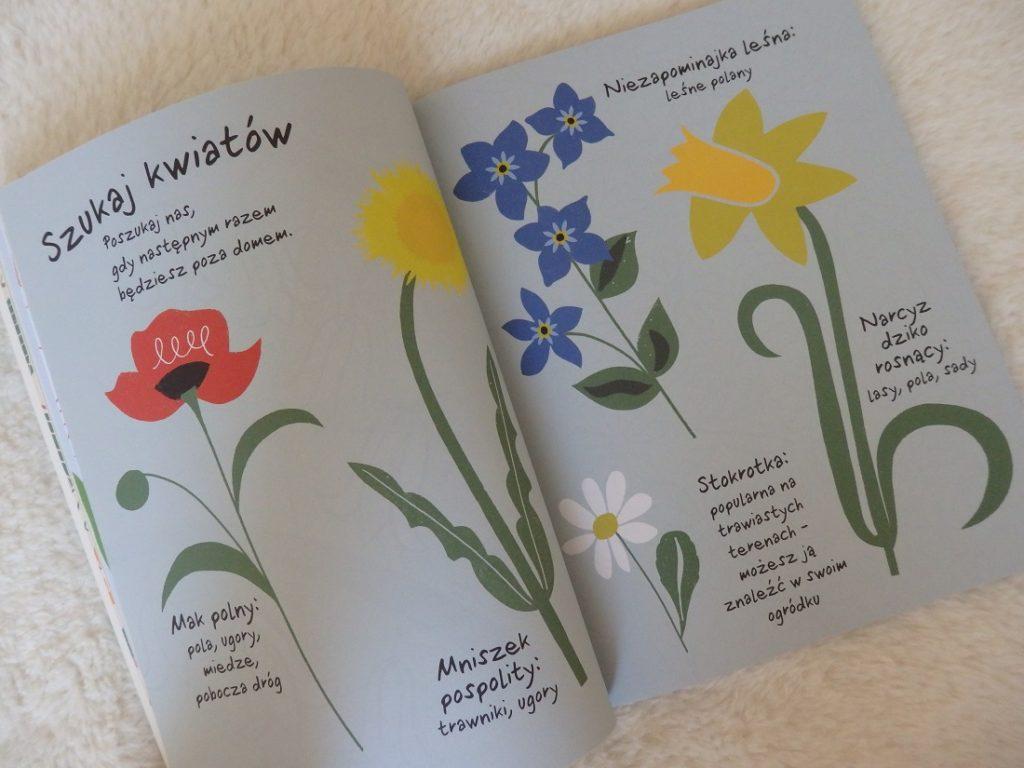 Dzień z przyrodą, 101 zadań inspirowanych naturą, Debbie Powell, Egmont