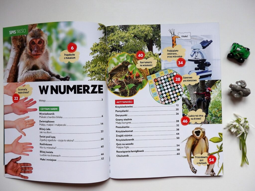 Świerszczyk Reporter - małpy
